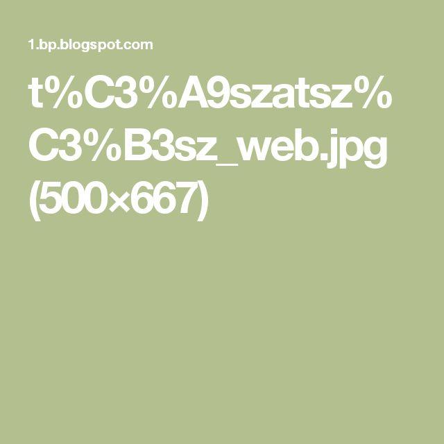 t%C3%A9szatsz%C3%B3sz_web.jpg (500×667)