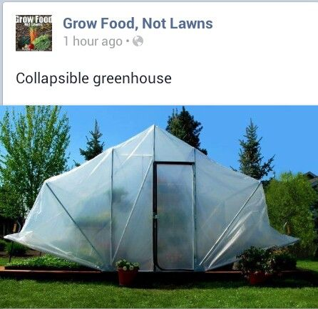 7 Best Temporary Greenhouse Images On Pinterest