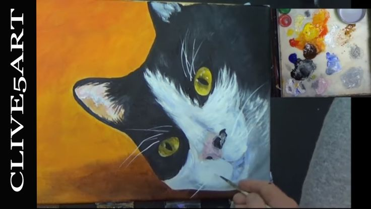 Cat Step by Step Acrylic Painting on Canvas Acrylic painting