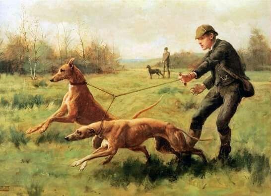 George Goodwin Kilburne - (1839 - 1924) - Training/Exercising of Greyhounds.