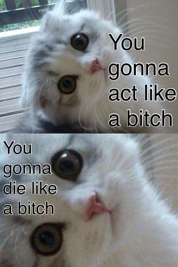 I laughed longer than I should have #dontjudge