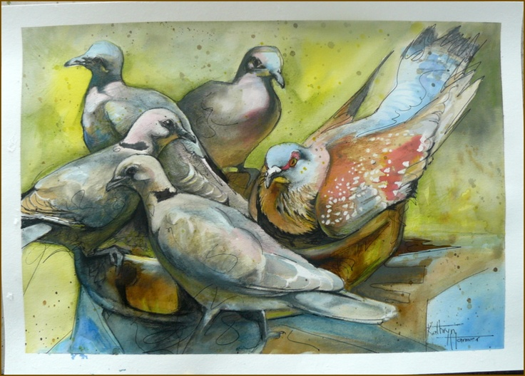Mixed media on paper. The Pigeon and Four of His Lovely Wives. Ink, graphite, coloured pencil, charcoal on 300gsm paper.