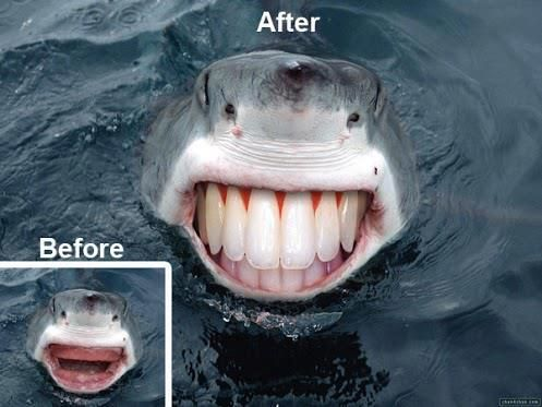 Sharks with people teeth