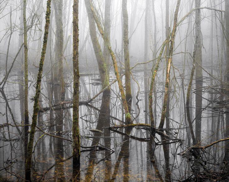 Joseph Wright, The Floods