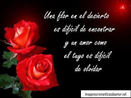 Imágenes de rosas rojas de amor