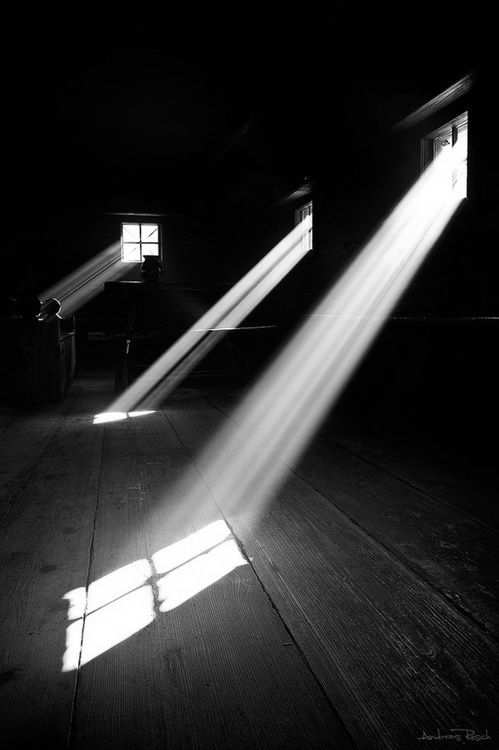 """The wound is the place where the Light enters you."" - Rumi"