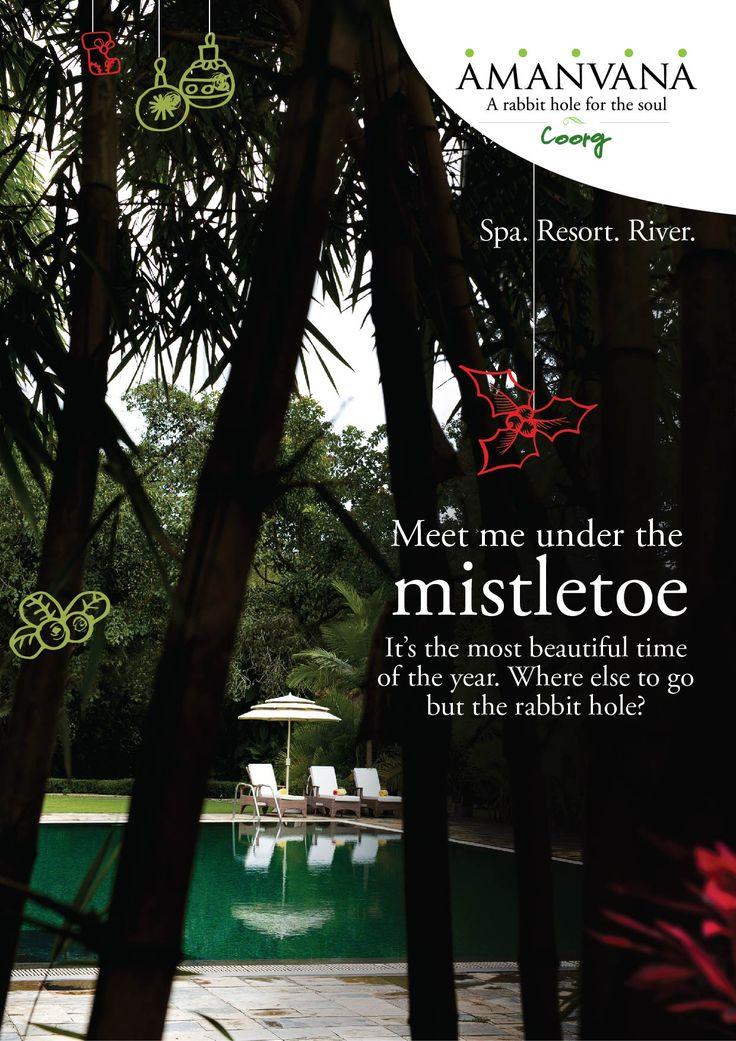 Meet me under the #Mistletoe
