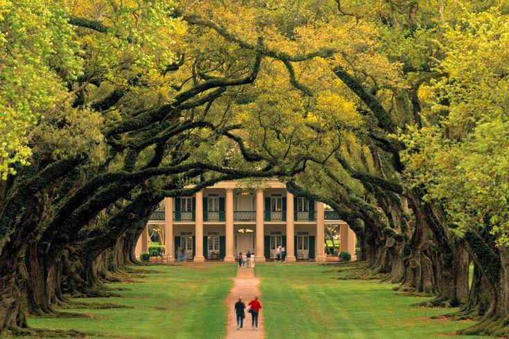 Plantación Oak Alley (EE UU): robles centenarios en Louisiana