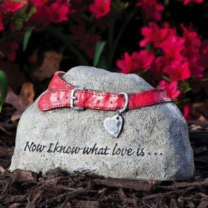 Evergreen Enterprises Pet Tiding Stone by TNT Media Group, Inc. Pets