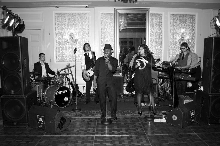Wedding Band: River City Hit Squad. New Orleans Royal Sonesta Hotel. Fleur di Lis suite. Amazing band!