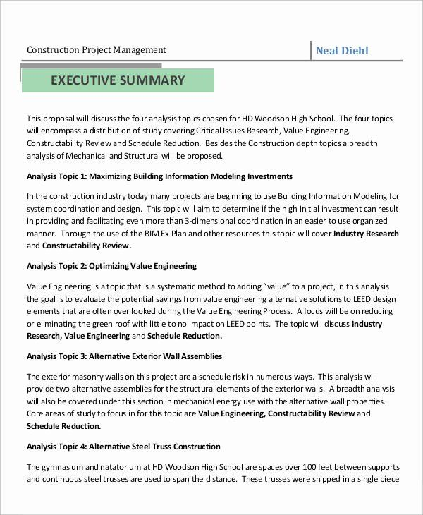 Project Executive Summary Template Word In 2020 Proposal