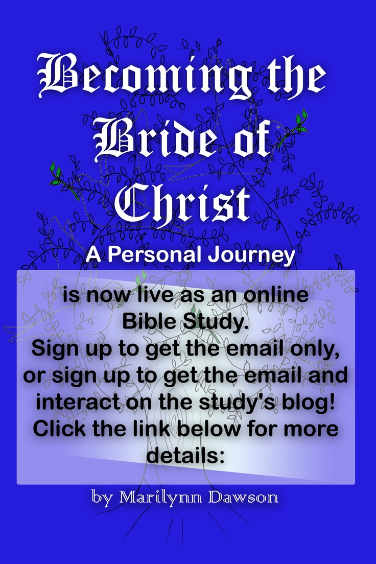 Daily Sessions From Becoming The Bride Of Christ: A Personal Journey, Is  Now Live