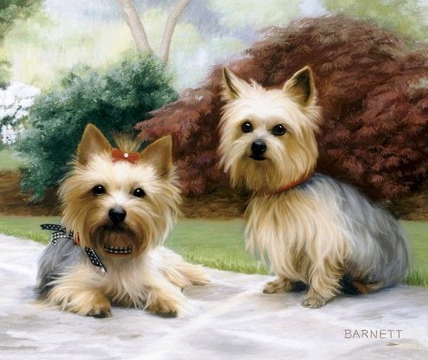 10 Best Barrie Barnett Images On Pinterest Dog Art