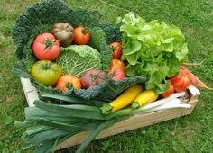 Voici la liste de ce qu'il faudrait planter (en théorie) pour avoir assez de légumes et de fruits pour une famille de 4 à 5 personnes. Je ne vous conseille pas d'essayer de tout planter dès la prem…