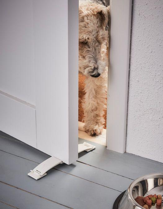 Un cane tenta di aprire una finestra bloccata con un fermafinestra - IKEA