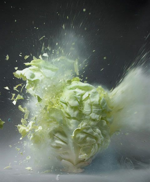 exploding cabbage