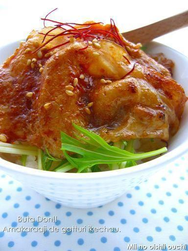 韓国風コチュジャン豚丼 & ケアンズに行ってきました(レインフォレスト・