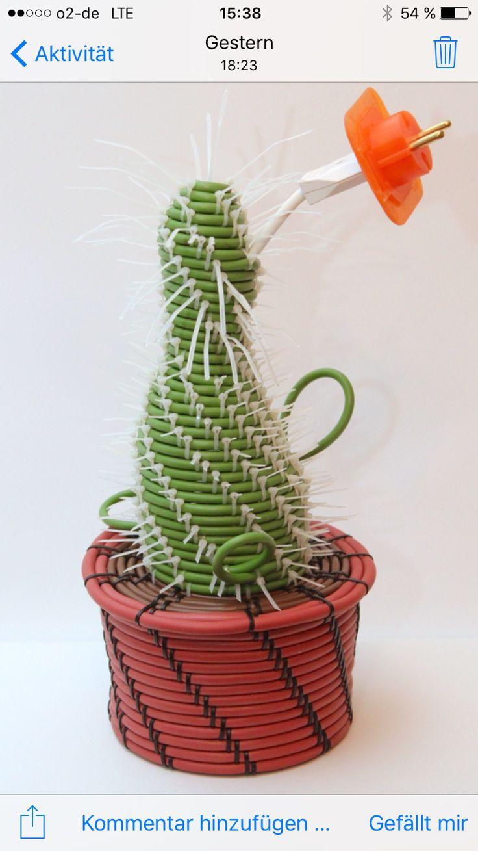 #kaktei#kaktus