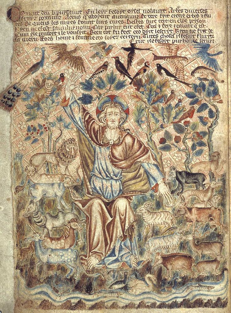From the Holkham Bible Picture Book, c.1320-30, this page represents God the Creator in the midst of his creatures, which include an elephant (middle left) and a unicorn (bottom left). The careful depiction of birds is very characteristic of some medieval English art and includes: a hawk chasing a heron; a swallow or swift; a lark; a long-eared owl; a woodpecker, blackbird, goldfinch, magpie, peacock, peregrine falcon, a wren in a pear tree, and possibly a puffin.