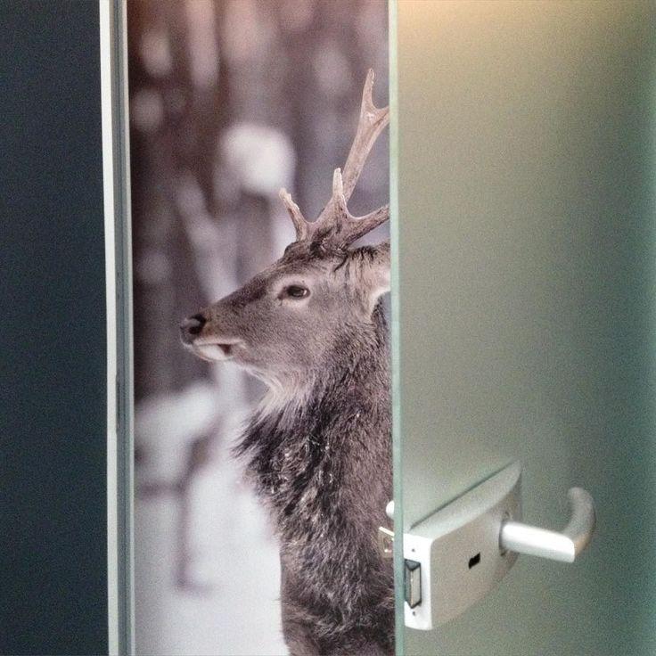 How to show The doors? #2kulproject and #opendoors #retaildesign #krakow #dlh #interiordesign #detail #deer #project