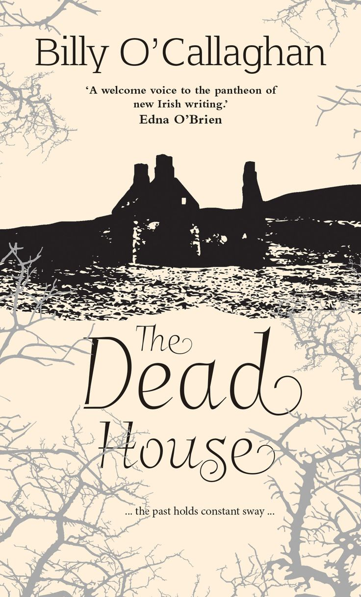 Maggie Turner, a successful young artist, moves from London to Allihies and buys an abandoned cottage from pre-Famine times. She is keen to concentrate on her art, but fragile after a broken relationship. While isolation seems romantic, the house is not the paradise she imagines. A modern ghost story by a masterful writer.  From the Costa Short Story Award Finalist, Billy O'Callaghan.  'a welcome voice to the pantheon of new Irish writing' - Edna O'Brien