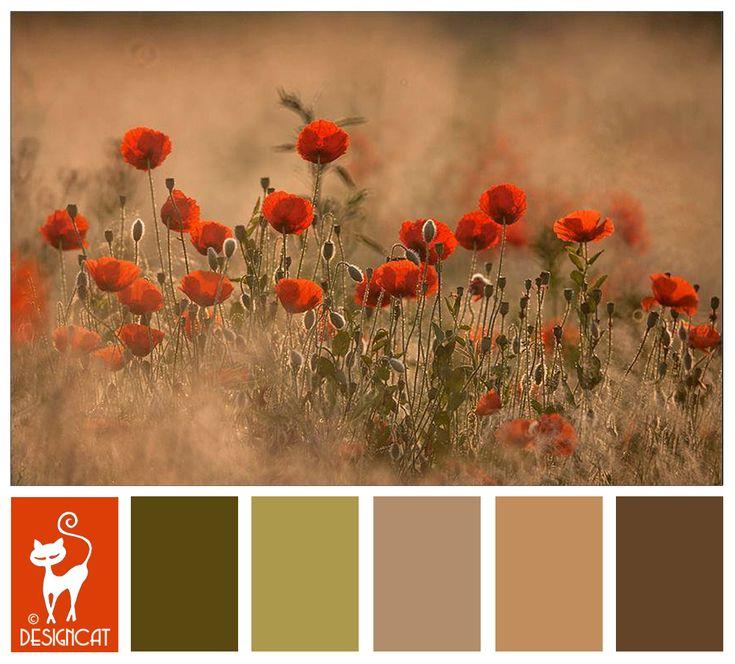 25 best ideas about burnt orange paint on pinterest - Burnt orange and green living room ...