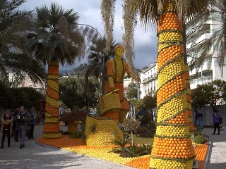Orange Festival- Nagpur India