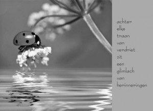 achter-elke-traan-van-verdriet-zit-een-glimlach-van-herinnering-innige-deelnemingskaart
