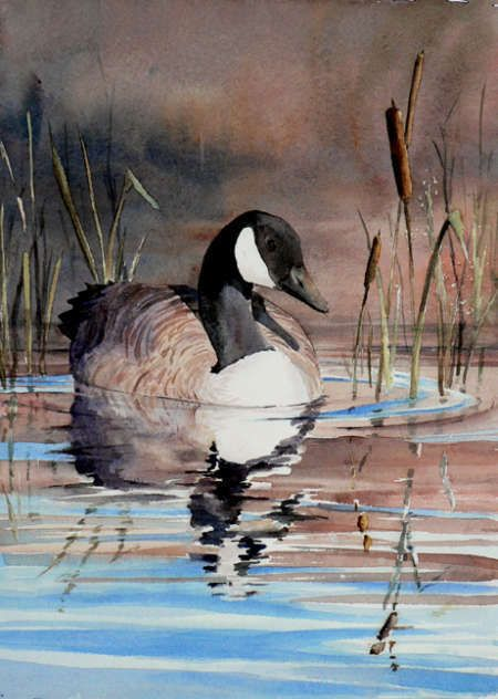 Ginette Marquis - Medium Aquarelle - Artiste - Art Quebec - Academie - Beaux-Arts - Repertoire d'art - Galerie d'art