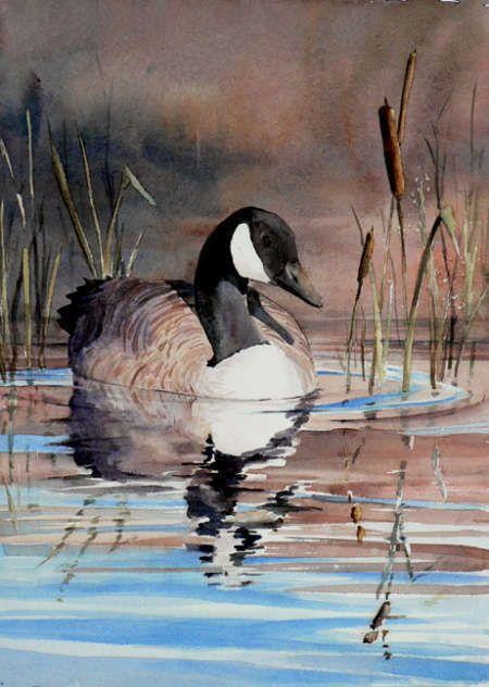 Ginette Marquis - Medium Aquarelle - Artiste - Art Quebec - Academie - Beaux-Arts - Repertoire d'art - Galerie d'art