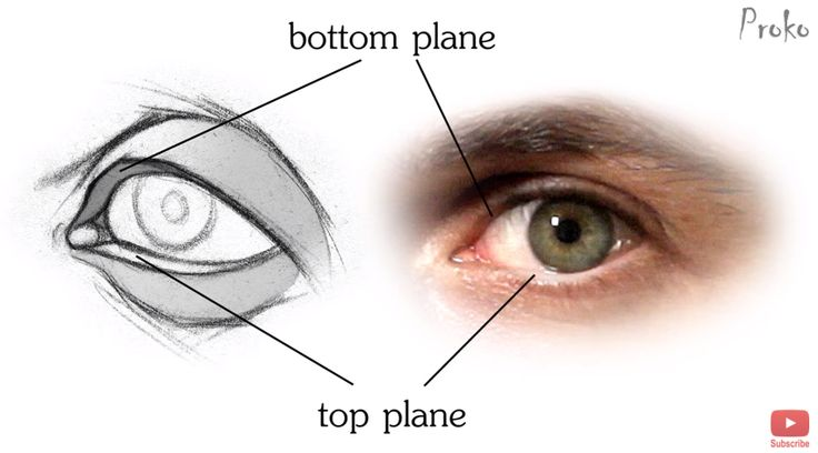 How to draw the inner border of an eye by Proko.