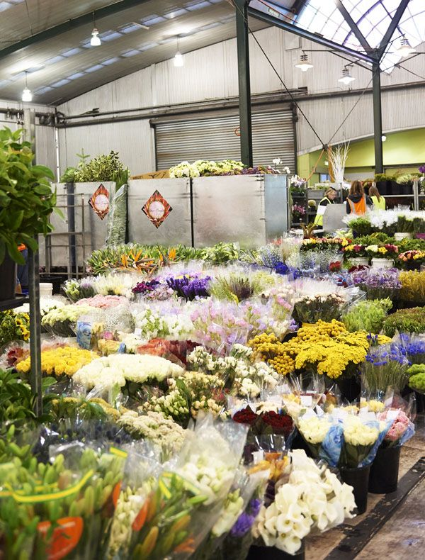 Footscray flower markets! Photo -Eve Wilsonfor The Design Files.