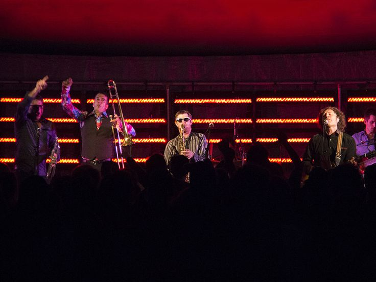 TSB Bank Festival of Lights, Taranaki Daily News Hatchery Lawn