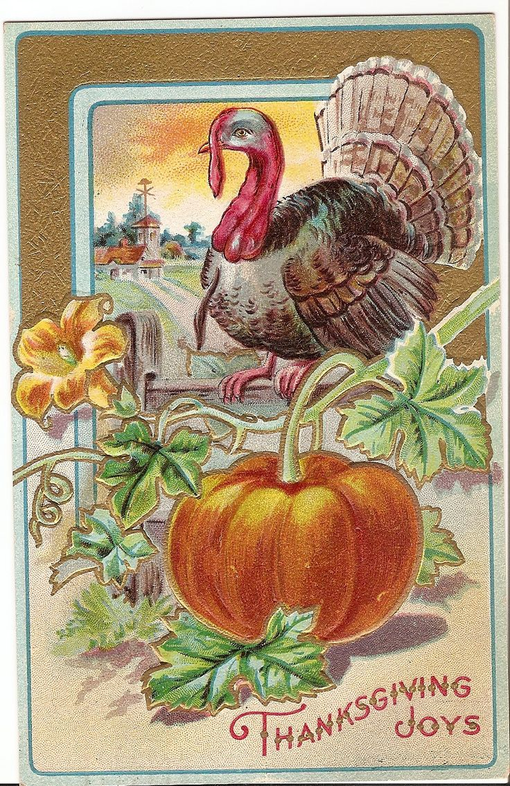 260 best thanksgiving images on pinterest thanksgiving decorations thanksgiving joys kristyandbryce Image collections