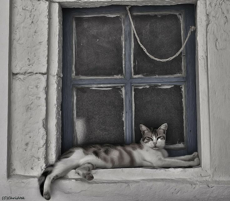 Relaxing by Chris Vekris on 500px