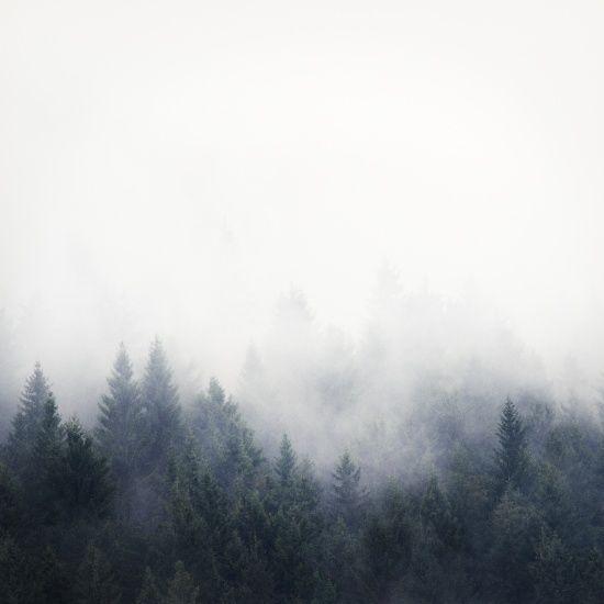 Forest fog art print, fog, forest, art photography, mountain art, scandinavian wall art, modern wall art, nordic art