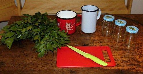 Maggi z libečku. Z libečku můžete snadno připravit ochucovací prostředek do polévek a dalších pokrmů.......... http://www.ireceptar.cz/zahrada/uzitkova-zahrada/libecek-v-kuchyni-aneb-jak-pripravit-domaci-maggi-ci-bylinkovy-olej