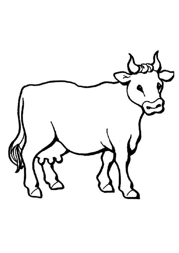Les 25 meilleures id es de la cat gorie coloriage vache sur pinterest dessin de vache vache - Dessin vache facile ...