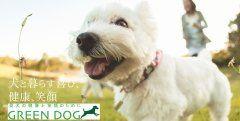 愛犬のためのプレミアムペットフードケア専門店 GREEN DOGがスマイルサーチカテゴリに登録されました  GREEN DOGグリーンドッグはあなたの愛犬のための厳選プレミアムペットフードケア用品を提案する専門店  犬と暮らす喜び健康笑顔をテーマに展開しています  通販は2500円以上で送料無料15時までの注文で土日祝も当日発送  東京神戸には実店舗もございます  詳しくは  http://ift.tt/2vAOAed  #GREENDOG #グリーンドッグ #ペット #ペットフード #通販 #犬