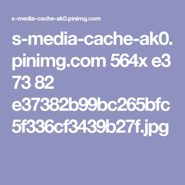s-media-cache-ak0.pinimg.com 564x e3 73 82 e37382b99bc265bfc5f336cf3439b27f.jpg