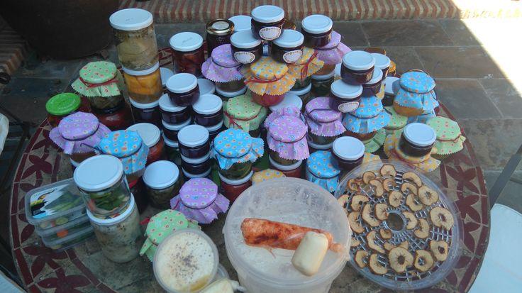 Actividades taller 2015 Segovia: Todos los productoselaborados en el curso. #Encurtidos #Mermeladas #Licor #QuesoFresco #Yogurt #Mantequilla #Deshidratados #Escarchados #Innovtur
