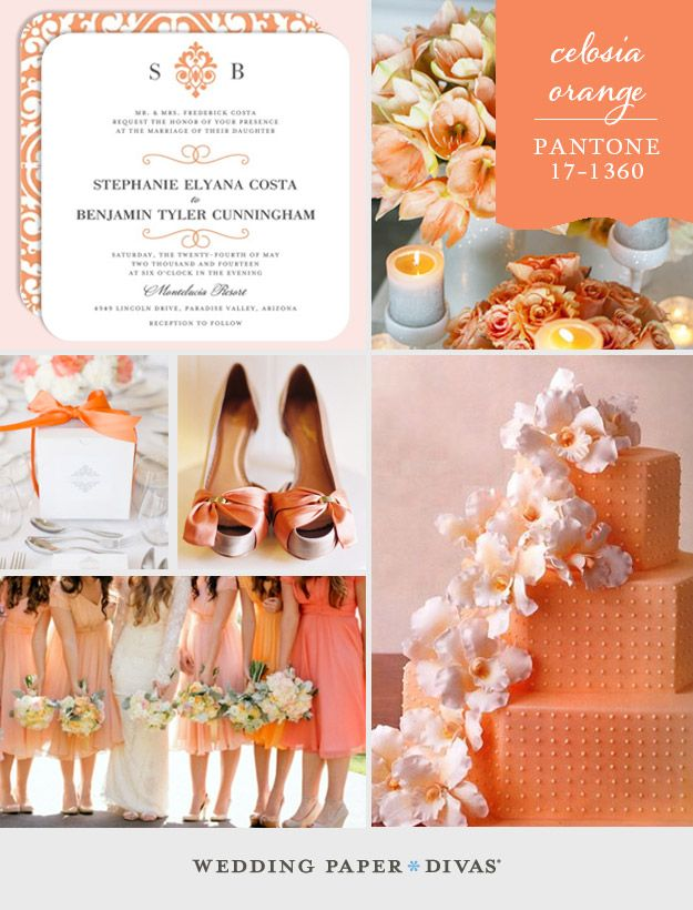We're back this week with another top color for Spring 2014, Pantone Celosia Orange. Use this playful hue in a palette of sherbet tones for a light and airy theme.