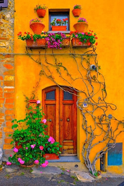 Lovely ColoursThe Doors, Yellow Wall, Vines, Colors, Fine Art Photography, Windows, Tuscany Italy, House, Places