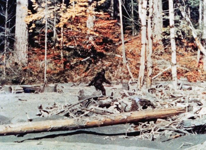 Is Bigfoot Real? 10 Famous Sightings That Might Make You Believe