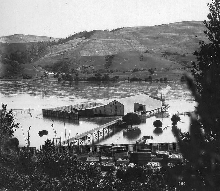Galería Histórica de Carahue. Puerto Fluvial  de Carahue hacia la década del '40 ----#reverside------#ghc #carahue #memoria #patrimoniofotografico #galeriahistoricadecarahue #jolaver #jorgeolaveriveros #paranoxiarec