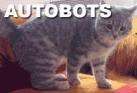 Autoboots vamos rodar. ..... literalmente heuheu