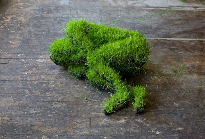 Hanging living grass sculptures / Mathilde Roussel