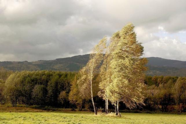 Hűvös, őszi időjárás - PROAKTIVdirekt Életmód magazin és hírek - proaktivdirekt.com