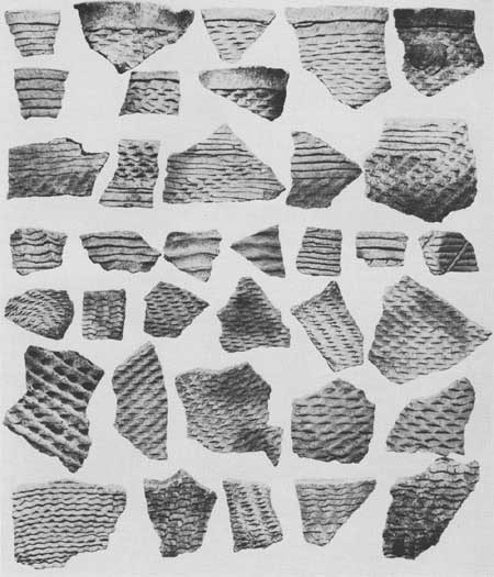 Mesa Verde National Park, Pueblo II Corrugated Jar Shards. Archaeological Excavations, 1950