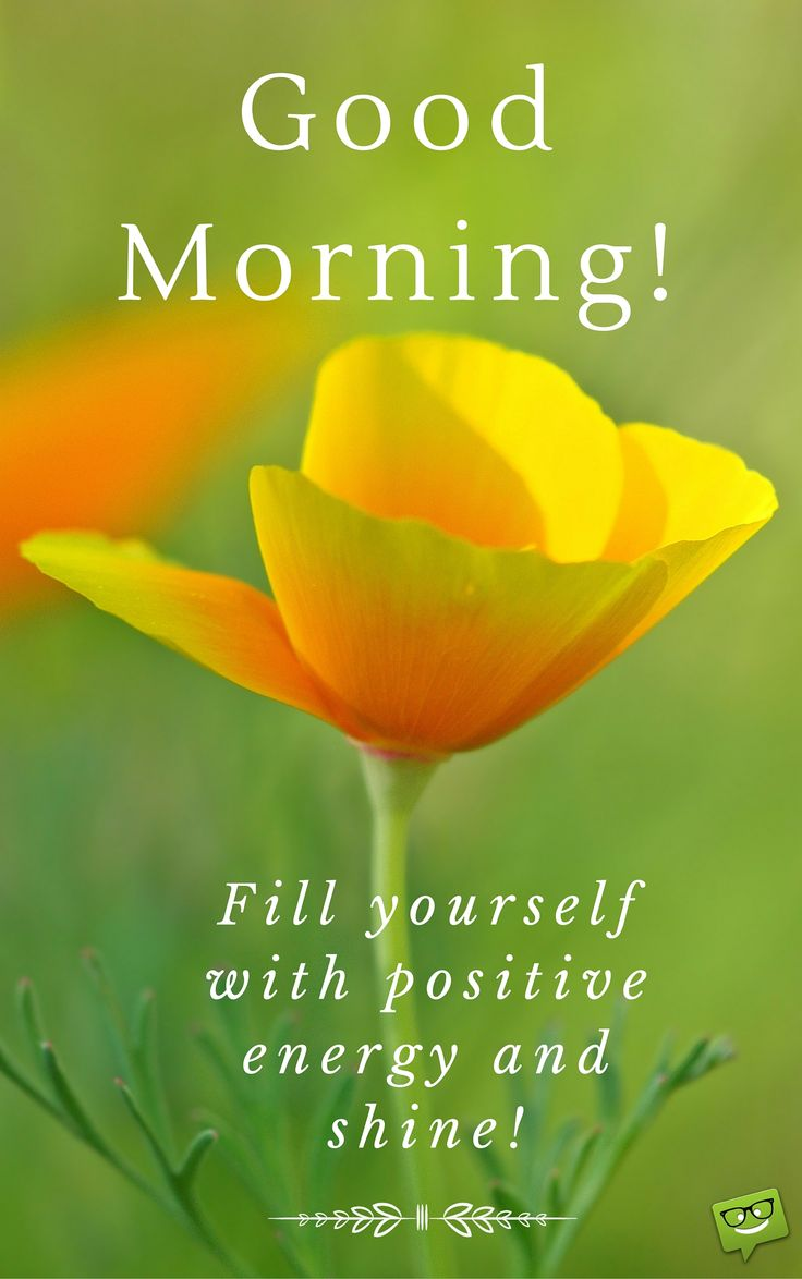 Image result for inspiring  morning greetings gif